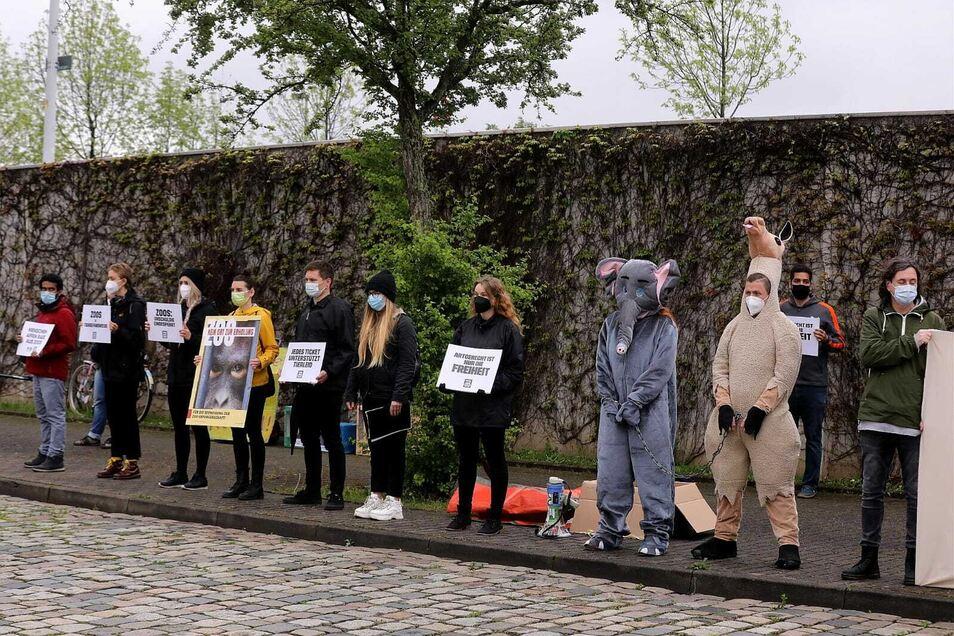 Die Tierschützer kamen teilweise verkleidet mit Tierkostümen an die Dresdner Messe.