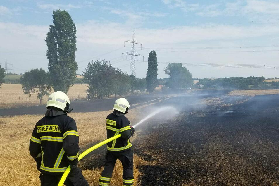 Die Feuerwehrleute rückten am Donnerstagmittag in den Döbelner Ortsteil Mochau zu einem Feldbrand aus.