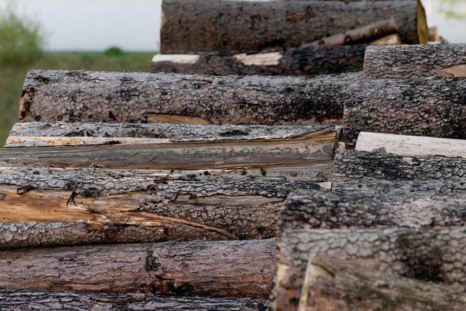 Das Holz wird auf Parkplätzen oder an Waldwegen aufgepoltert.