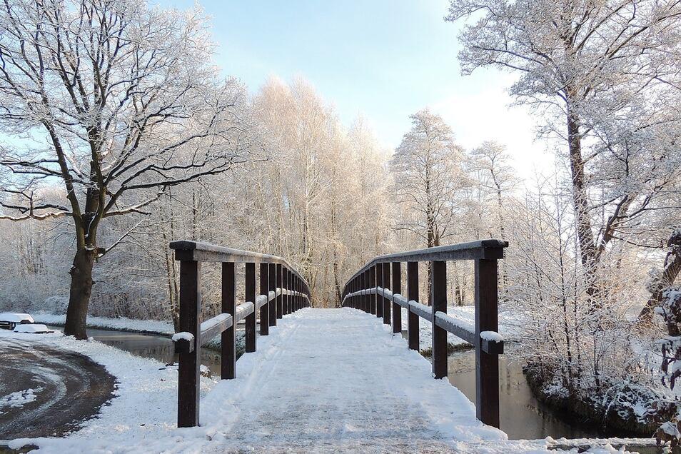 Erleben Sie einen Winter-Spaziergang in klirrender Kälte und sanfter Natur.