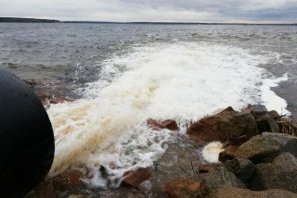 Etwa 60 Millionen Kubikmeter Wasser zapfte die LMBV in diesem Jahr aus Spree, Neiße und Schwarzer Elster ab, um damit die Flutung ehemaliger Tagebaue voranzutreiben.