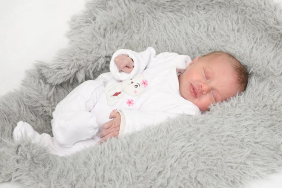 Charlotte Geboren am 4. Februar Geburtsort Ebersbach-Neugersdorf Gewicht 3.080 Gramm Größe 48 Zentimeter Eltern Antje und Ion Pinkwart Wohnort Preititz