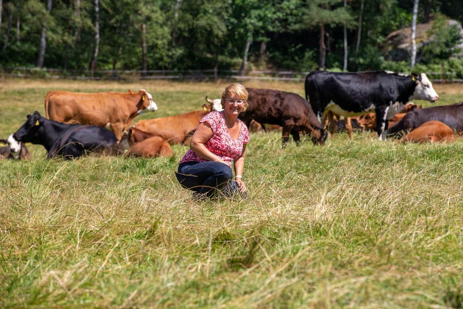 Ines Senger schaut nach ihren Tieren auf der Weide bei Leupoldishain.