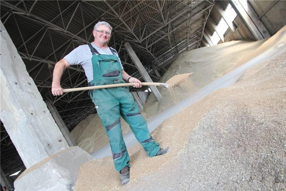 Lagermeister Herbert Lommtzscher muss es bei mehr als 30 Grad im Getreidelager aushalten.