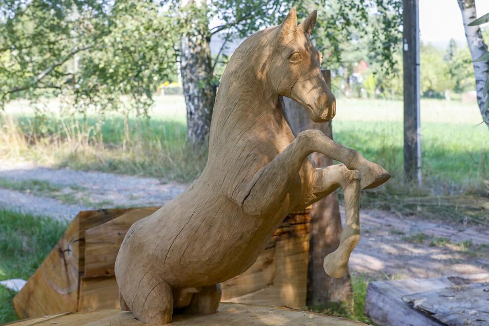 Das Pferd soll noch einen Bruder erhalten und das Denkmal für Mario Kahl und die Ritterspiele krönen.
