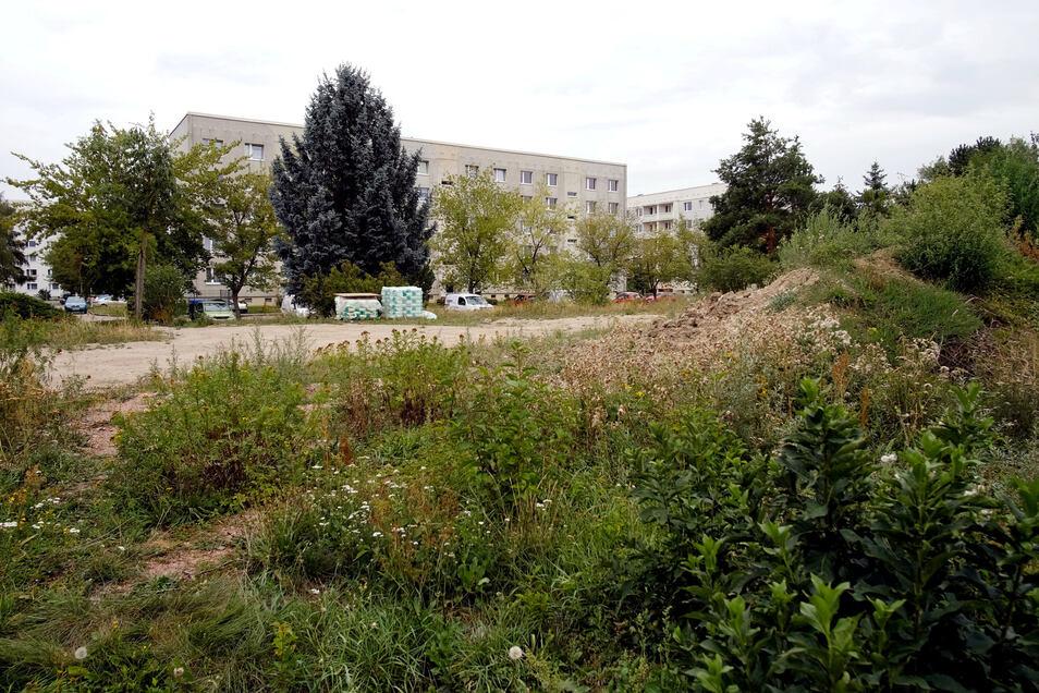 Auf diesem Grundstück am Albert-Mücke-Ring entsteht das moderne neue Seeg-Gebäude. Wärme und Strom werden gleich vor Ort erzeugt.