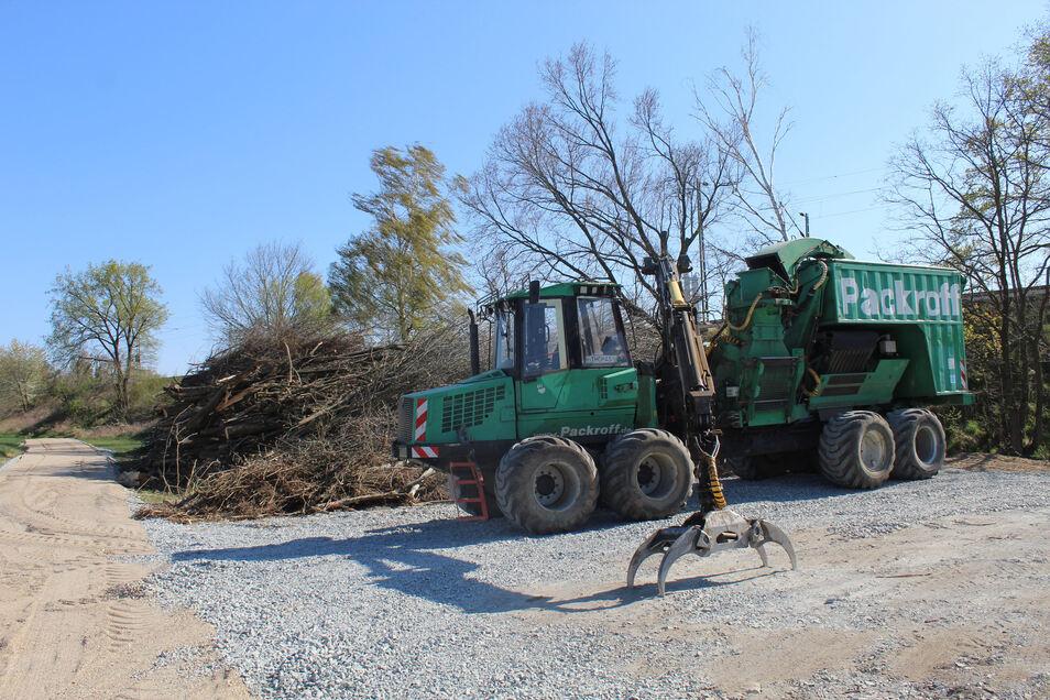 Ein mobiler Schredder der Firma Packroff zerkleinert die Bäume, die die Bahn hat fällen lassen.