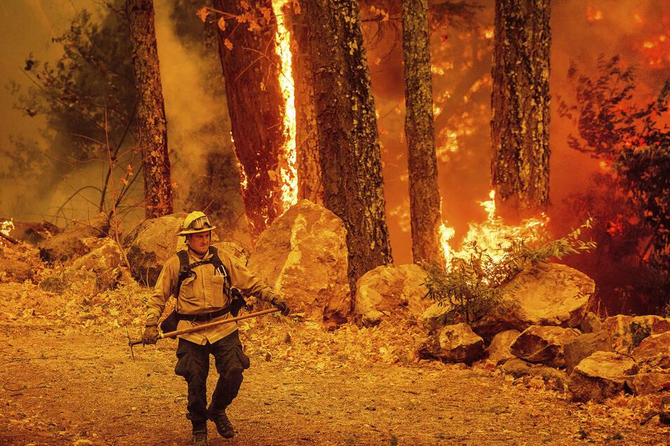Ein Feuerwehrmann beim Einsatz gegen das «Glass Fire» im kalifornischen Calistoga.