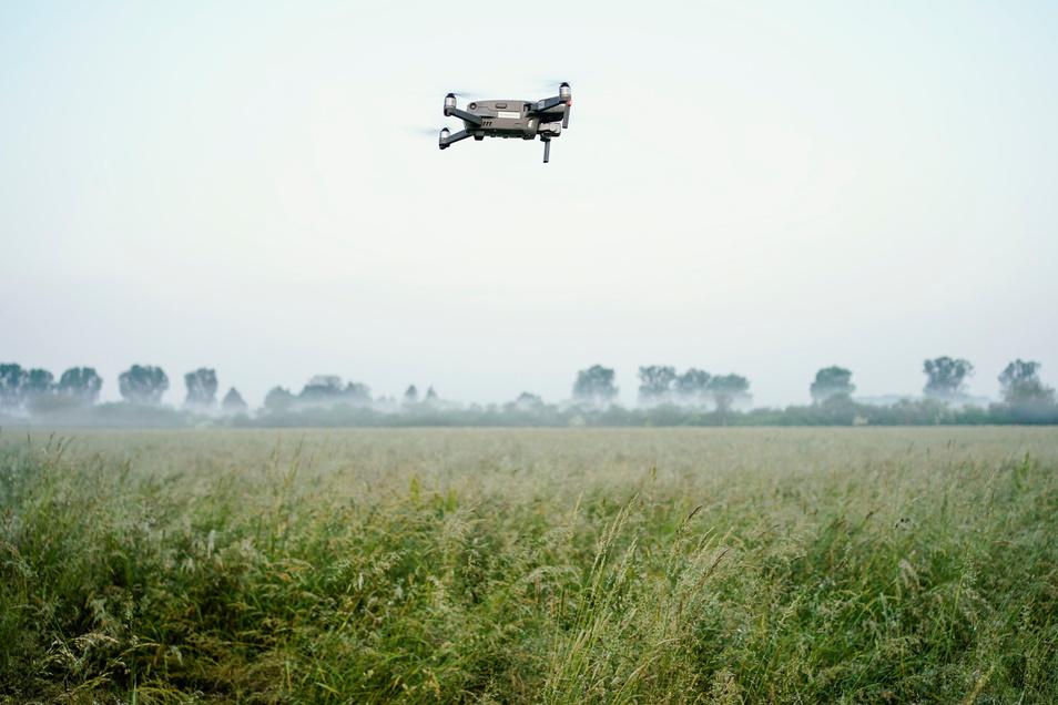 Eine Drohne der Rehkitz-Rettung Weinheim mit Wärmebildkamera fliegt über eine Wiese.