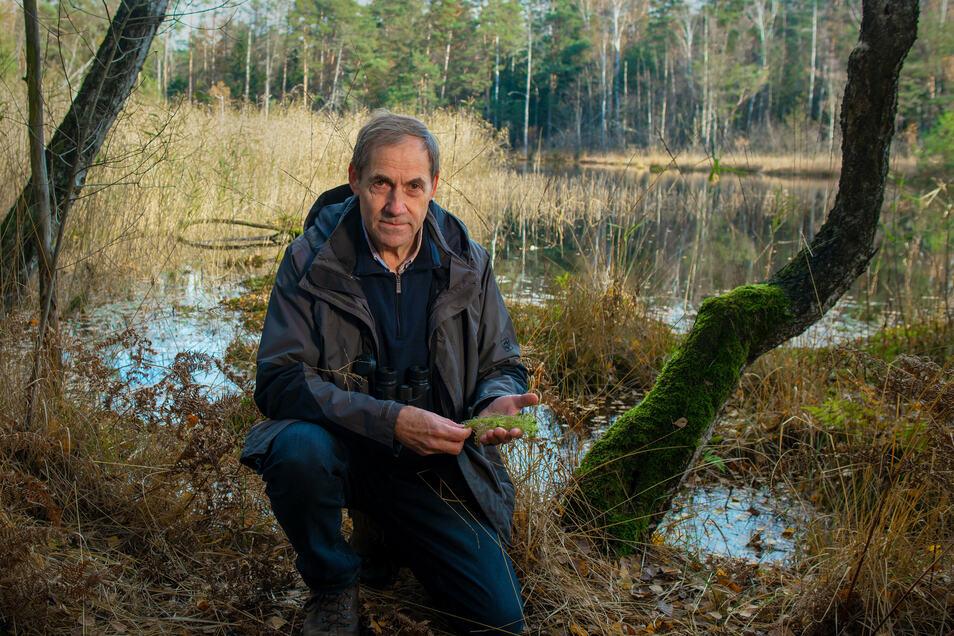 Naturschützer Matthias Schrack trägt das Bundesverdienstkreuz und ist fasziniert von Waldmooren. Er fürchtet ihren schleichenden Tod, sollte der Kiesabbau expandieren.