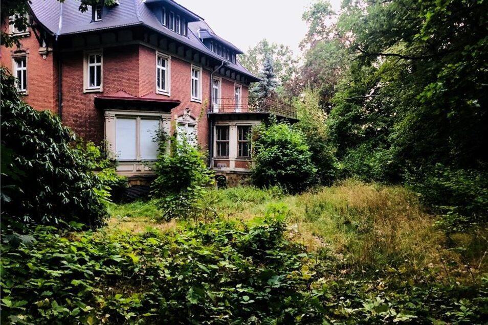 Vorher-Nachher-Vergleich: Noch im Sommer war die Villa völlig zugewachsen.