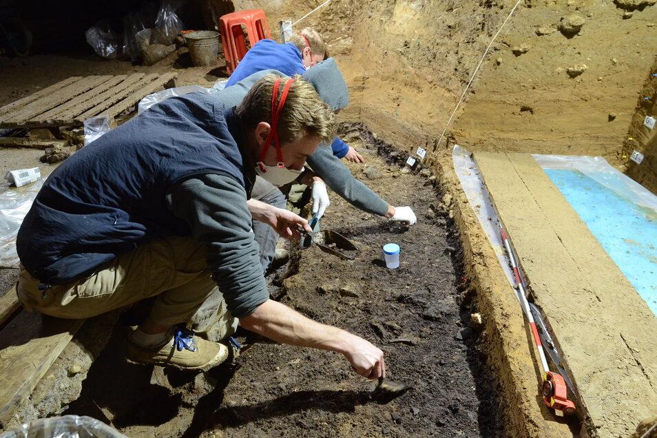 Maske auf für Leipziger Forscher! Aber nur um die Zehnttausende Jahre alten Knochenreste nicht genetisch zu verunreinigen.