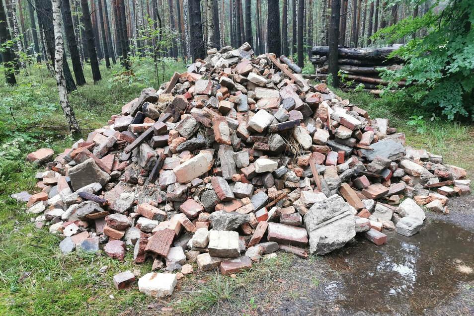 Illegal abgelagerter Müll im Wald bereitet den Förstern zunehmend Sorgen.