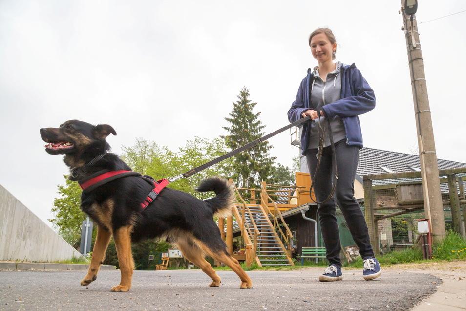 Claudia Preuß geht mit Mischling Charly aus dem Tierheim Horka spazieren. Das ist vor allem wichtig in der kontaktarmen Coronazeit.