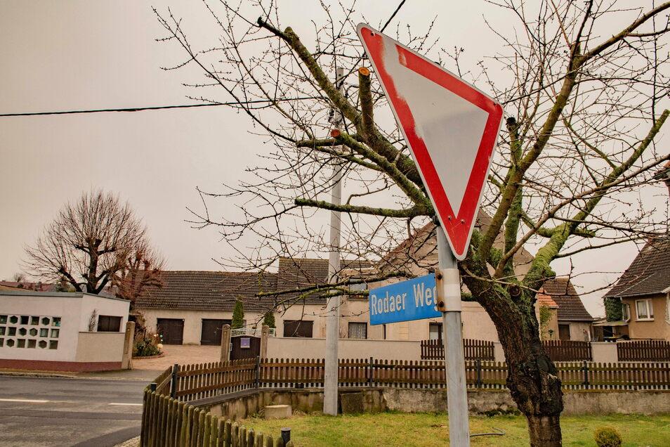 In Wildenhain könnten an Rodaer Weg und Skassaer Straße neue Eigenheime gebaut werden. Das will der Ortschaftsrat in den Flächennutzungsplan aufnehmen lassen.
