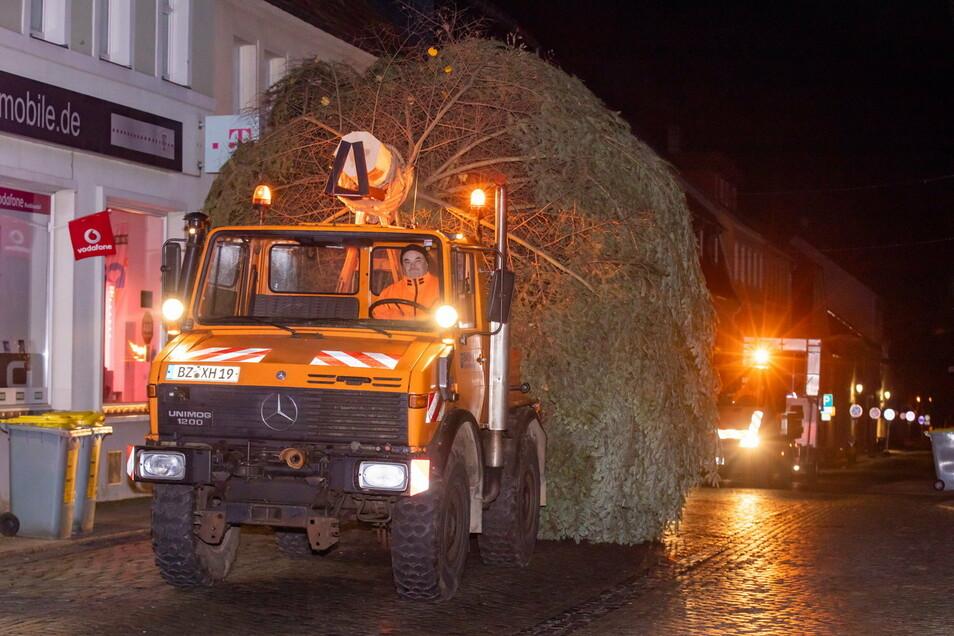 Der Transport des Baumes begann bereits gegen 4 Uhr und führte etwa über die Kirchstraße, laut Stadtverwaltung die für diesen Zweck einzig mögliche Zufahrt zum Altmarkt.