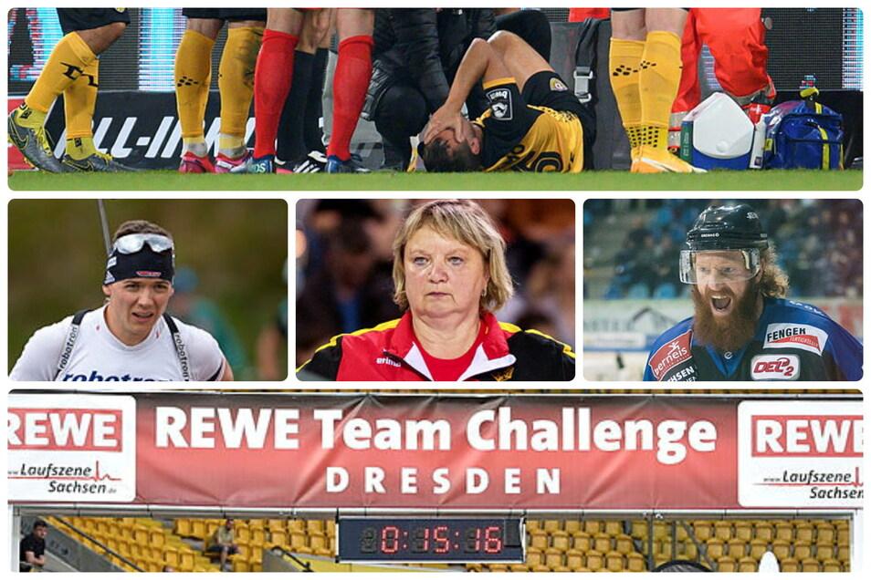Der Sportdienstag aus sächsischer Sicht: Dynamos Löwe trainiert, Biathlet Strelow wartet, Trainerin Frehse lässt Schüler turnen, Ex-Eislöwe Pielmeier gewinnt und die Team-Callenge startet in Wellen.