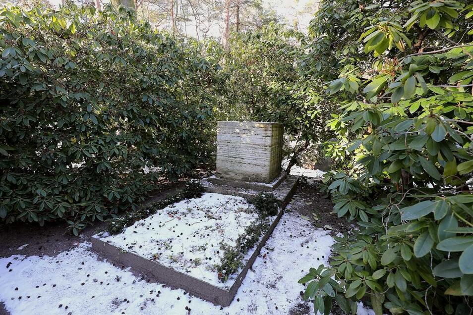 Das ist das geschändete Grab des Weltkriegspiloten.