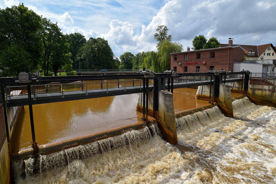Nur dank des abgepumpten Grundwassers aus dem Lausitzer Braunkohlerevier blieb die Spree bis zum Starkregen Ende August ein Fluss. Sonst wäre sie zum Rinnsal verkommen. Fast 60 Prozent des Spreewassers kam aus Tagebauen. Mitunter ist das stark eisenhaltig