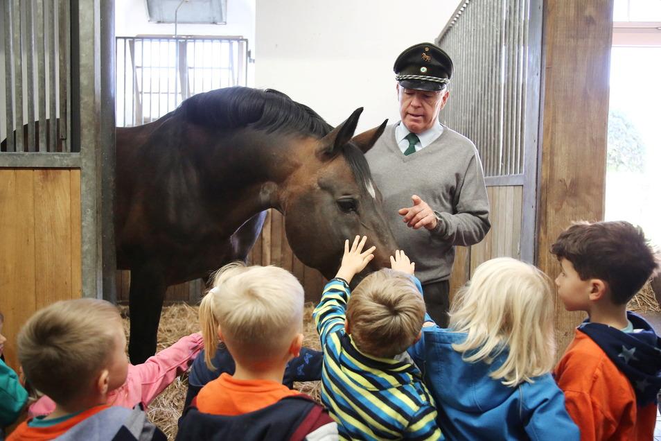 Zum Kindertag am Donnerstag im Landgestüt in Moritzburg konnten die Mädchen und Jungen natürlich auch die edlen Vierbeiner ganz nah erleben. Nicht weniger gut kamen Fahrten mit der Kutsche an.