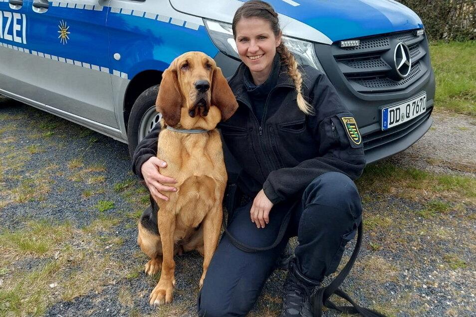 Polizeimeisterin Christin Fiddecke hat den vermissten Döbelner mit ihrer zweijährigen Bloodhound-Hündin Hazel gefunden.