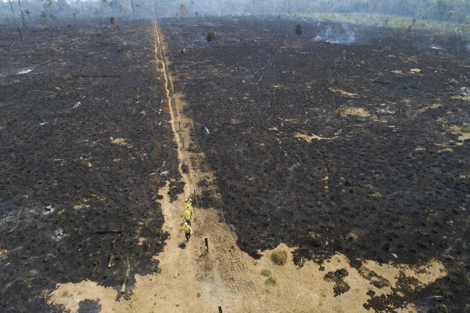 Mitarbeiter der staatlichen brasilianischen Umweltbehörde IBAMA unterhalten sich mit einem Bauer auf einer verbrannten Fläche.