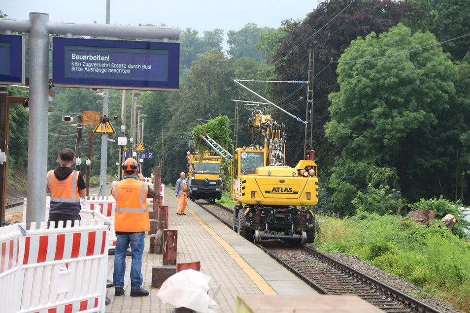 Statt S-Bahnen rollen derzeit immer wieder Arbeitsfahrzeuge über die Schienen.