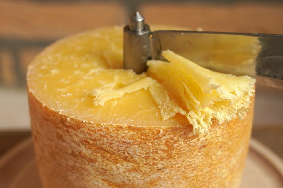 Dieser Hartkäse wird mit einem speziellen Hobel geschnitten. Rund 50 Käsesorten stellt die Hofkäserei Schönborn her.