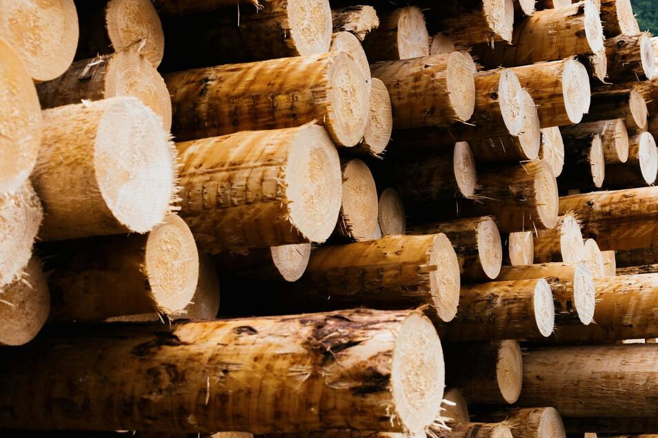 Viele auf Holz angewiesene Handwerker in Sachsen sind unternehmerisch und existenziell gefährdet.