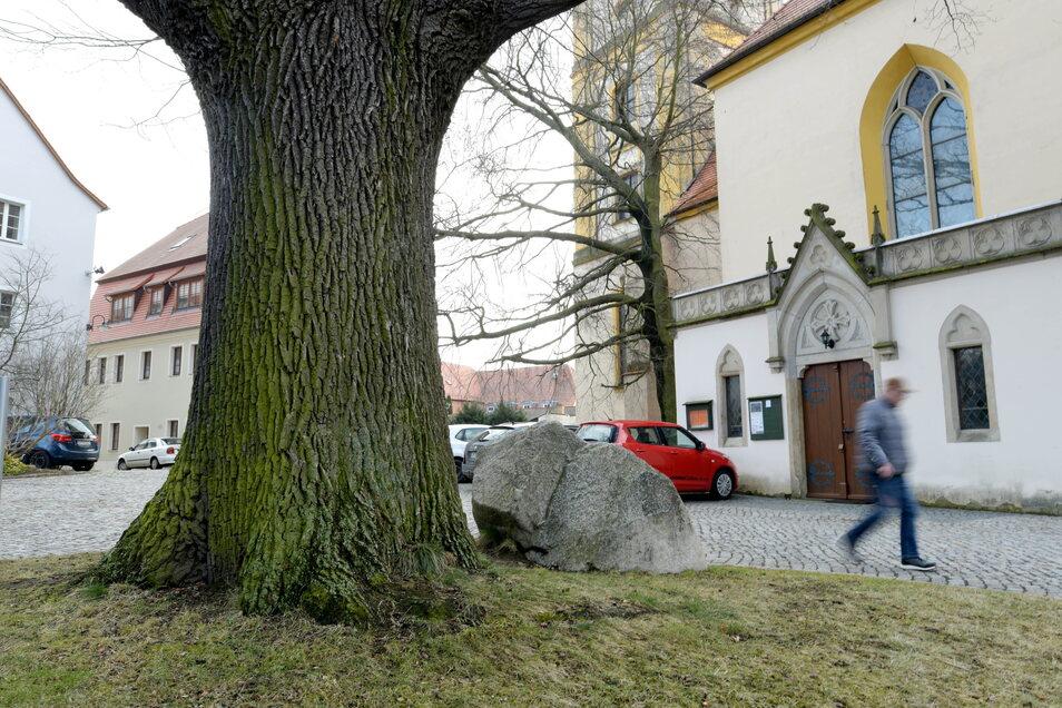 Die Albert-Eiche vor der Kirche in Bernstadt ist ein Platz, an dem sich manche Männer gern erleichtern.