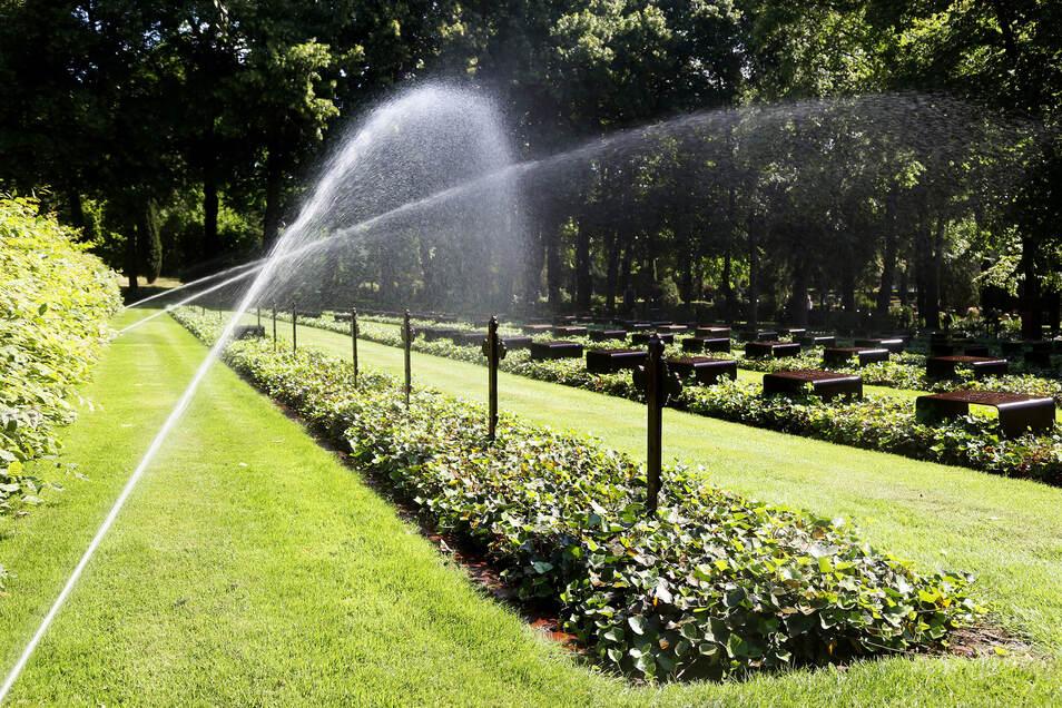Die Bewässerungsanlagen laufen normalerweise nur nachts. Dann ist die Verdunstung geringer.
