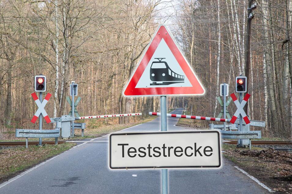 So könnte das aussehen, wenn der Testring durch den Wald nördlich von Niesky führt. Aber das ist noch ungewiss, solange sich kein Investor bereit erklärt, die Eisenbahnteststrecke zu bauen.
