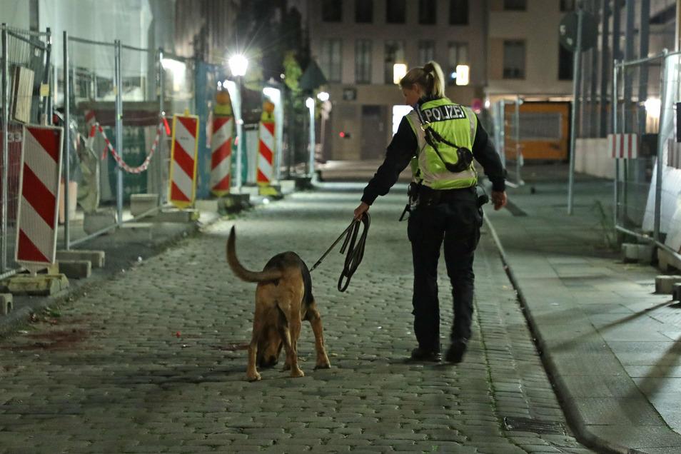Am Tatort setzte die Polizei einen Hund bei der Spurensuche ein.