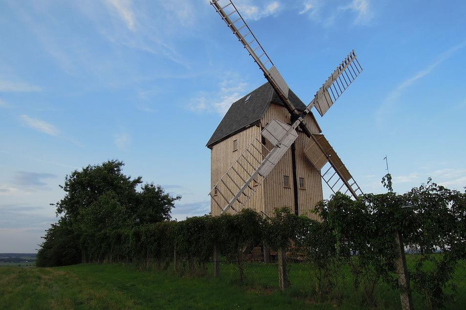 Zum Mühlentag gibt es unter anderem Führungen durch die 1828 erbaute Bock-Windmühle am Liebschützberg , die 1987 von einer LPG wiedererrichtet wurde; außerdem Infos zum Gesteinsabbau-Vorhaben.