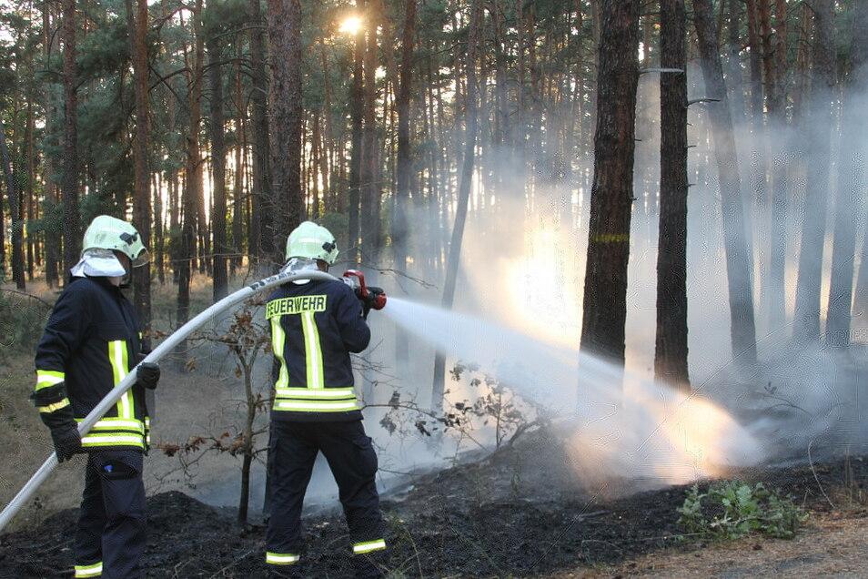 Waldflächen bei See und Uhsmannsdorf standen am Wochenende in Flammen. Die Waldbrandgefahr ist gegenwärtig sehr hoch.