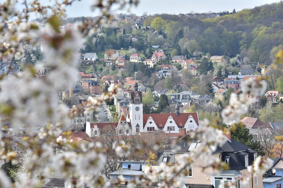 Wo in Freital wird das geplante Haus der Bildung entstehen?