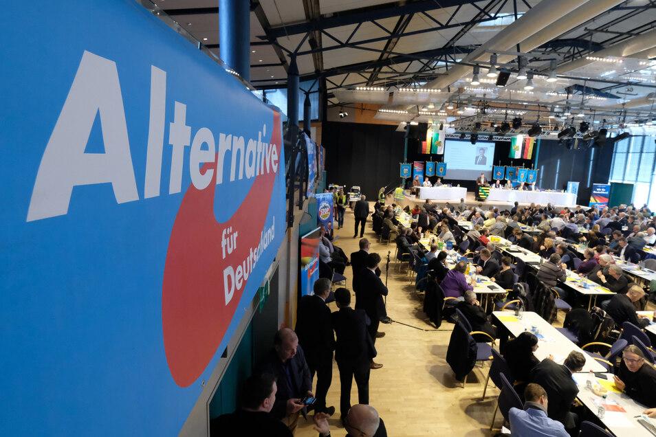 Am Wochenende traf sich die AfD zum Parteitag in Markneukirchen.