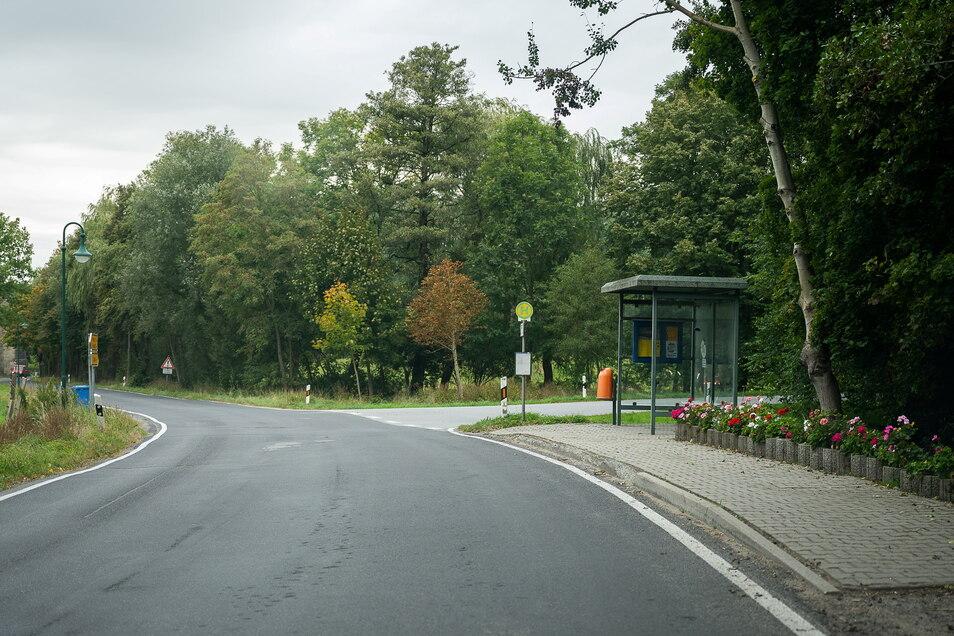 Die schönste Bushaltestelle in Sohland a.R. am Abzweig nach Reichenbach. An anderen Haltestellen im Dorf müssen die Fahrgäste aufpassen, dass sie beim Aussteigen nicht in eine Pfütze hopsen, wenn der Busfahrer nicht ein Stückchen weiter anhält.