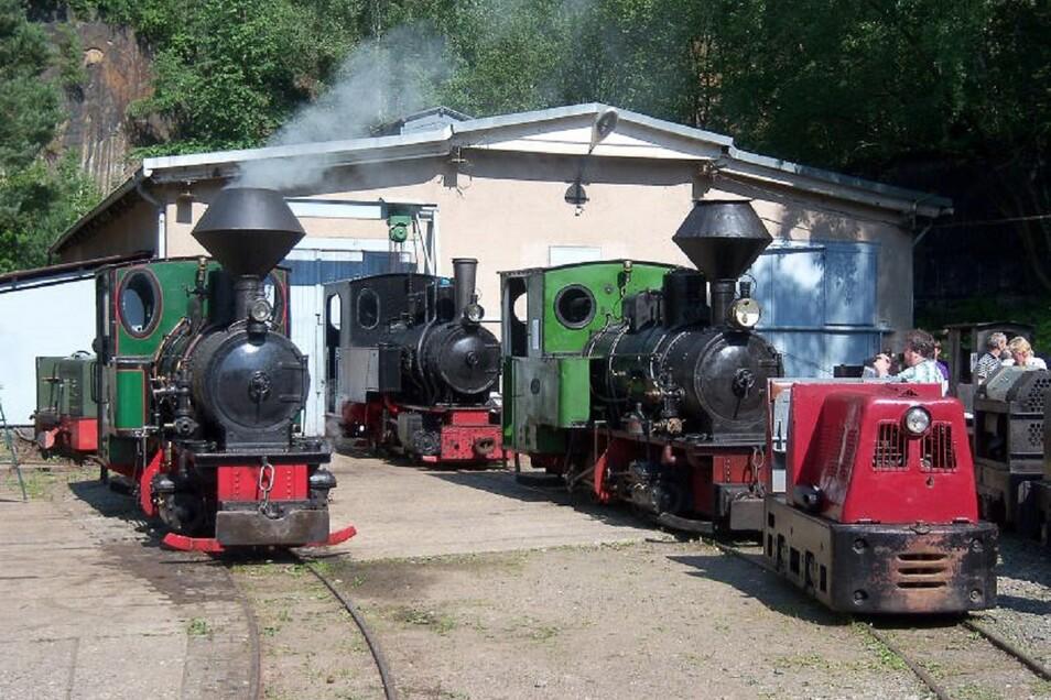 Jede Menge Loks und Dampf gibt es im Feldbahnmuseum Herrenleite zu sehen.