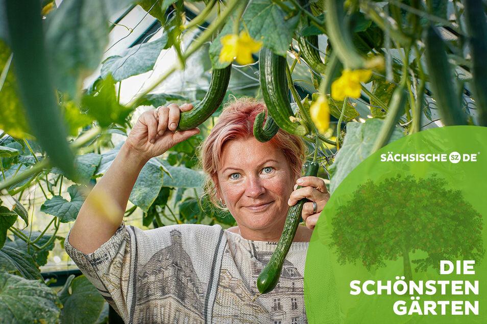 Corina Cwolek hat in ihrem Nutzgarten auch ein kleines Gewächshaus, in dem Gurken wachsen. Richtig gerade ist davon keine einzige.