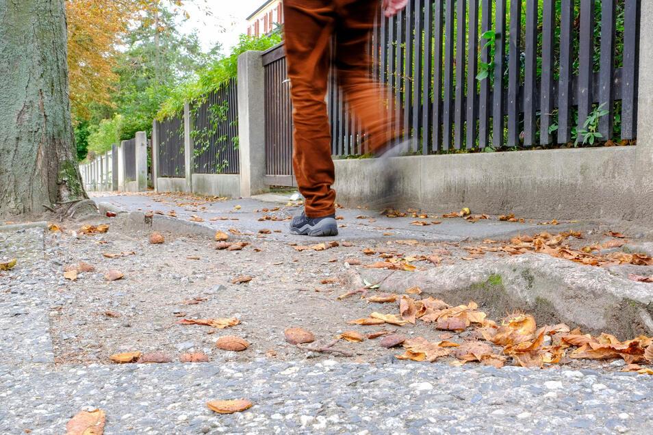 In einem besonders schlechten Zustand befindet sich der Gehweg an der Karl-Marx-Straße im Dichterviertel. Eine Sanierung ist geplant.