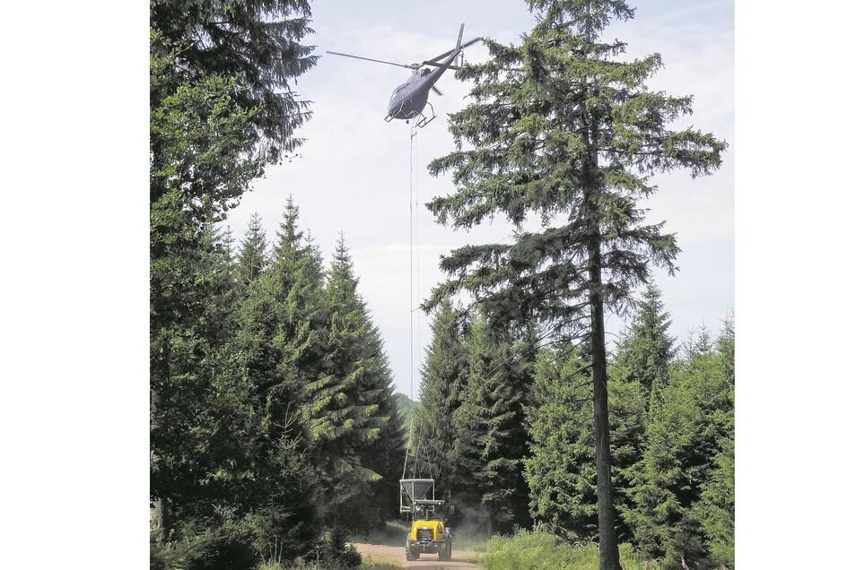 Im Forstbezirk Bärenfels kalkt der Staatsbetrieb Sachsenforst voraussichtlich ab Ende Juli die Wälder.