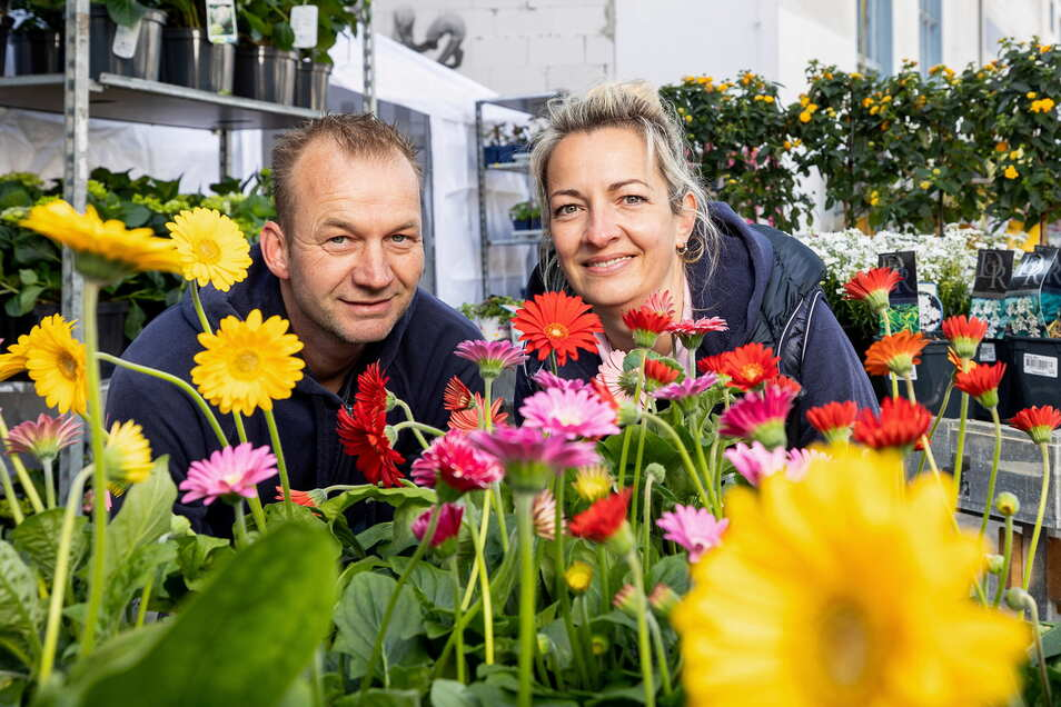 Katrin Habbe-Loef und Arjan Loef verkaufen am Eisenhammer in Freital auch diesen Sommer alles, was das Gärtnerherz begehrt