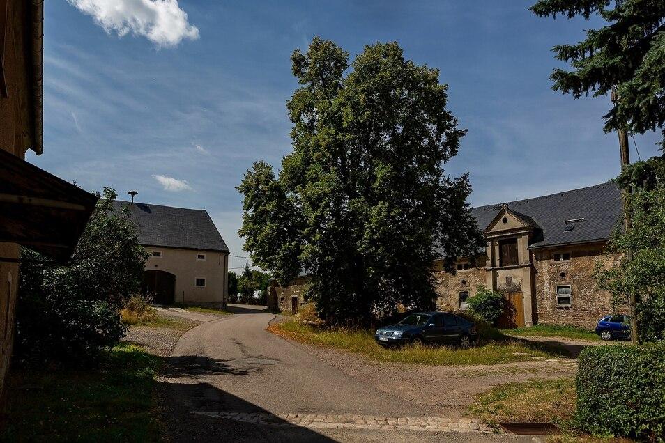 Auf dem Hof des ehemaligen Ritterguts in Colmnitz spendet der große Baum Schatten, auch für parkende Autos.
