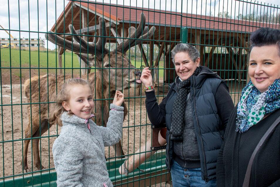 Hermine, Manuela und Sandra Schulze (von links) aus Frankenberg haben einen Halt bei Rothirsch Horizus eingelegt.