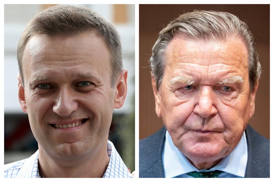 Alexej Nawalny (l.) hat Altkanzler Gerhard Schröder (SPD) die Annahme verdeckter Zahlungen von Russlands Präsident Wladimir Putin vorgeworfen.