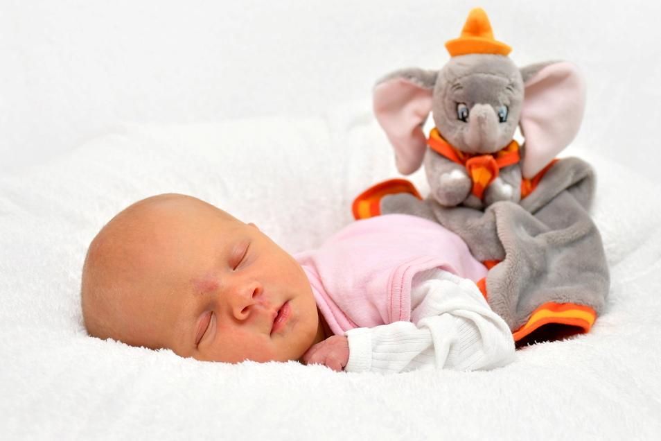 Hanna, geboren am 9. Februar, Geburtsort: Freital, Gewicht: 2.495 Gramm, Größe: 45 Zentimeter, Eltern: Nicole Hilbig und Christian Morgenstern, Wohnort: Bannewitz