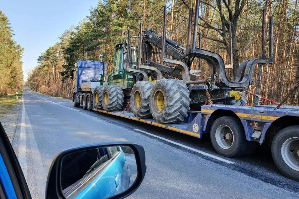 Musste nach der Intervention von Bürgerinitiative und Naturschutzbund wieder abgezogen werden: Baumfälltechnik, mit der bei Ottendorf während der Vogelbrutzeit Wald abgeholzt werden sollte.