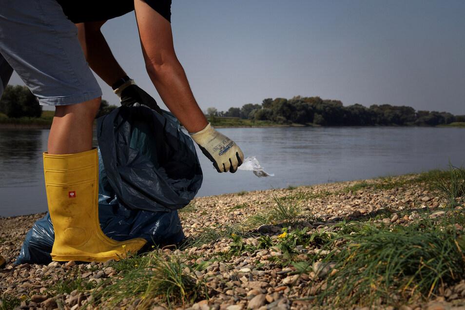 Müll findet man immer wieder am Ufer der Elbe. Auch hier in Nünchritz, unterhalb des ehemaligen Elbgasthofs.