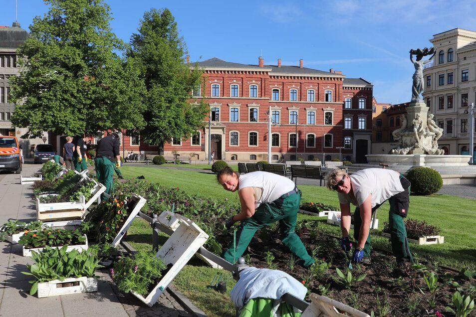 Die Gärtner des Städtischen Betriebshofes haben auf dem Postplatz mit der Sommerbepflanzung begonnen.